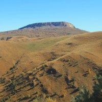 Гудгора западный склон, высота 2480м. Вид с плато Бийчесын. :: Vladimir 070549