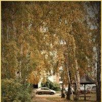 Осенний мотив... :: Прима Игорь Кондратьевич
