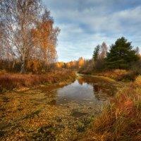 Осень-золотоносица... :: Roman Lunin