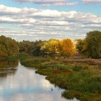 Осень на реке. :: Валентина Домашкина