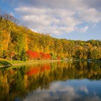 Осень... :: Сергей Офицер