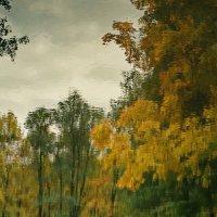 Акварельное отражение осени :: Владимир Гилясев