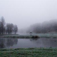 утро в парке :: Сергей Цымбалов