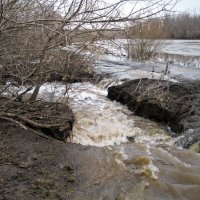 Разлив реки :: Татьяна Королёва