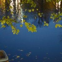 Осень, октябрь, вечер, Чистые пруды. :: Татьяна Помогалова