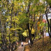 Южная осень :: Сергей