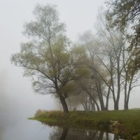В тумане :: Сергей Корнев