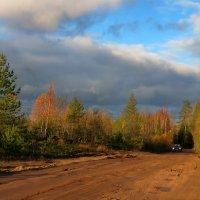 Дорога на дачу :: Светлана
