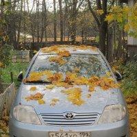 Золотая осень :: Дмитрий Никитин