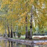 Осень :: Анастасия Фомина