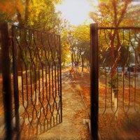 Добро пожаловать в осень, и пусть она будет нашей. :: Людмила Богданова (Скачко)