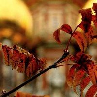 Осенний  этюд :: олег свирский