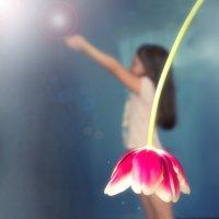 мой цветочек:) :: Екатерина Саблина