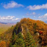 Золотая осень :: Vladimir Nedosekin