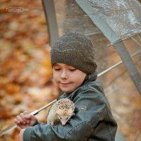 Осенний Эльдар .... :: Кристина Беляева