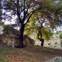 У стен старого города :: Tanja Gerster