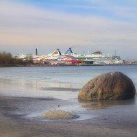 Таллинский порт :: Marina Pavlova