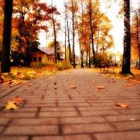 В осеннем парке :: Сергей F