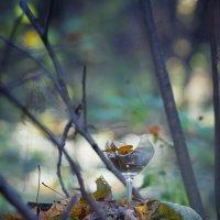 осенний вздох не выпитый до дна.... :: Екатерина Саблина