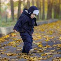 Осень :: Alexander Moshkin