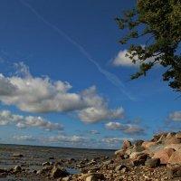 Прибалтийский берег :: Татьянка *