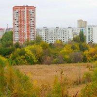 Октябрь,городской пейзаж... :: Тамара (st.tamara)