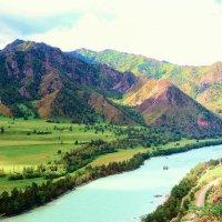 В горах Алтая :: Марина Кузьмина