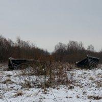 Северо-западной берег озера Ильмень в месте впадения в него реки Веряжи :: Елена Павлова (Смолова)