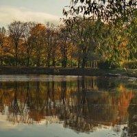 Пруда осенняя была вода :: Владимир Гилясев