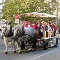 Туристы в Шербуре :: Natalia Harries