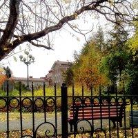 Осенний сквер, промокшая скамейка и листья снова падают, шурша… :: Анна Приходько
