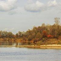 Золотая осень на Припяти :: Ирина Приходько