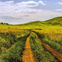 Башкирия :: alexandr lin