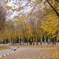 Осеннее настроение :: Михаил Почкалов-Семченков