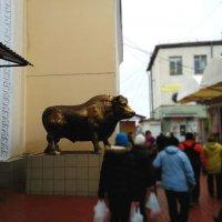 Потрясающие фигуры у мясного павильона в Луганске :: Наталья (ShadeNataly) Мельник