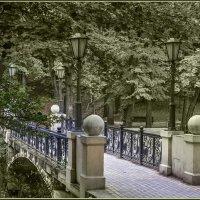 В парке... :: Александр