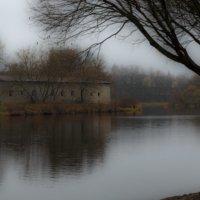 Туман на реке. (р. Пскова) :: Виктор Грузнов