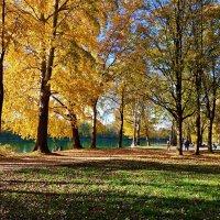 """Улыбнись и подумай: """"Какая красивая осень,   Сколько света и красок...."""" :: Galina Dzubina"""