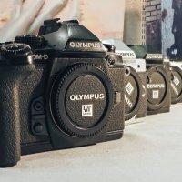 Olympus :: Константин Батищев