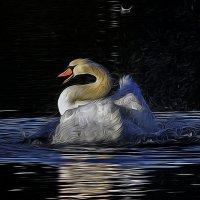 Только перья летят :: Alexander Andronik