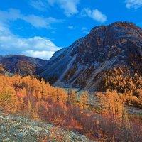 Осень в верховьях Чёрного Иркута :: Анатолий Иргл