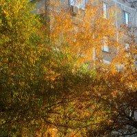 Осень украсила дом :: Елена Семигина