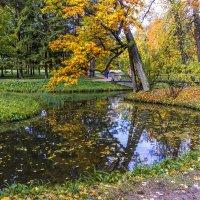 Осенние картинки :: ирина )))
