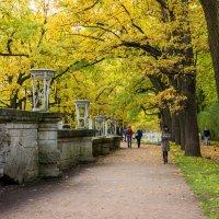 Прогулки в Екатерининском парке :: ирина )))
