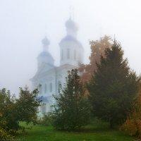 Растворяясь в белой пелене :: Валерий Горбунов