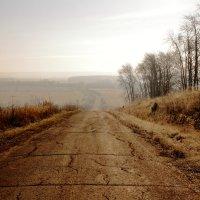 Дорога в тумане :: Татьяна Шаклеина