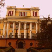 Дворец Румянцевых и Паскевичей (вид сзади) :: Сашко Губаревич