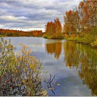 Осень- рыжая девчонка :: Вячеслав Минаев