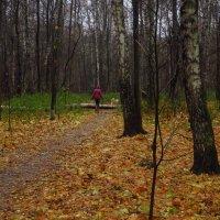 Если любишь друга, осенний дождь не страшен :: Андрей Лукьянов