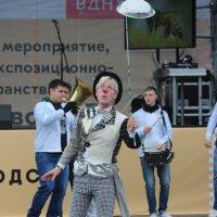 цирк приехал :: Дмитрий Солоненко